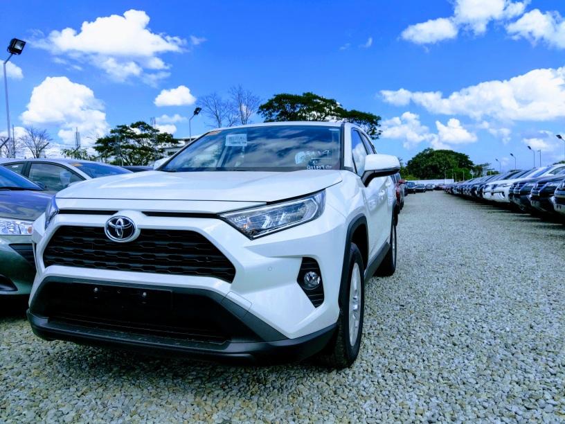 Toyota RAV4 - White Pearl